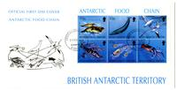 Antarctic food chain